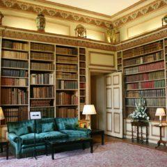 Bibliothèque design : une véritable pièce déco