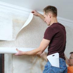 Pourquoi faire appel à un professionnel pour l'installation de votre papier peint ?